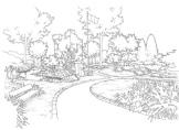 plunkett-garden