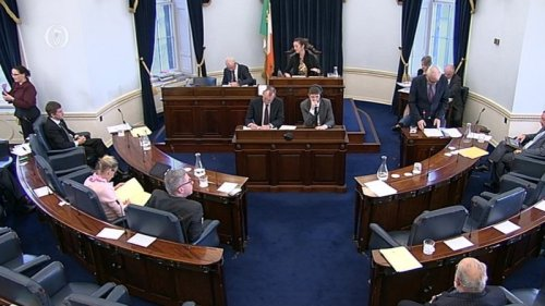 Finian McGrath, Minister of State with responsibility for Disabilities speaking during the Seanad discussion.jpg